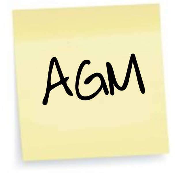 Image result for Gaa Agm